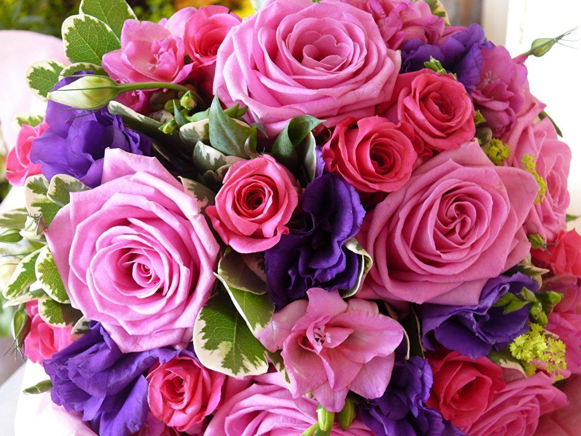 Розы или О консультациях